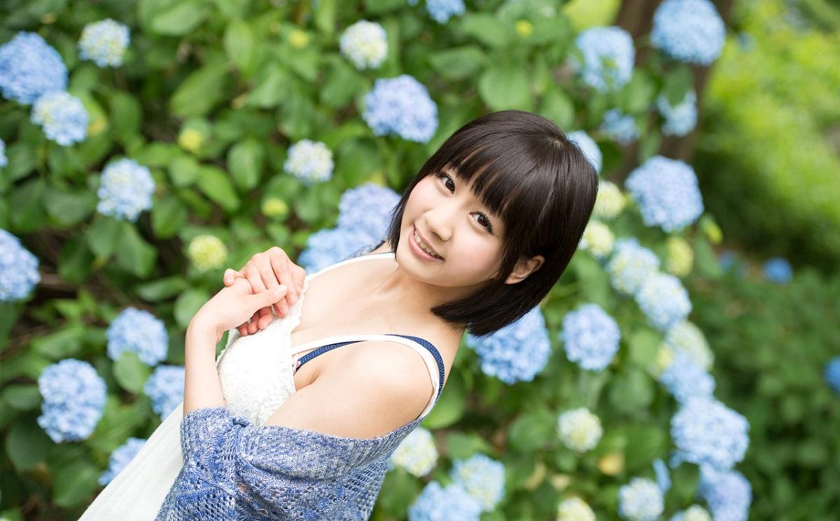【No.9961】 紫陽花 / 篠宮ゆり