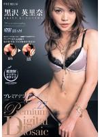プレミアデジタルモザイク Vol.027 黒沢英里奈