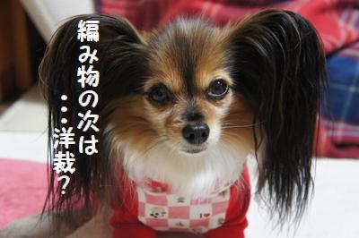 020_20111213200529.jpg