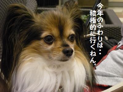 092_20120120200508.jpg