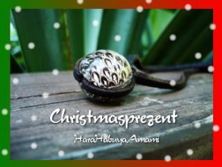 christmas-p