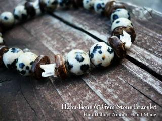 ハブ骨と天然石