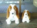 dog-two-0712-01.jpg