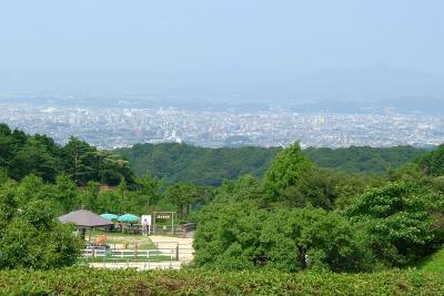 2011_07_24(日)No(020)
