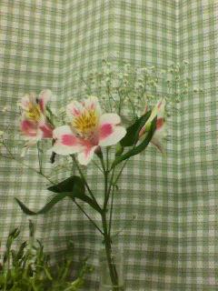 111212花