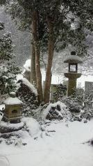 雪化粧のお庭