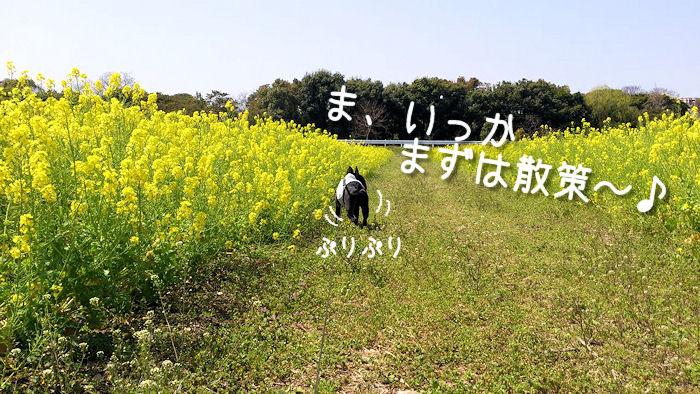 IMG_1669.jpg