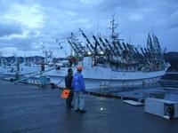気仙沼_20111118-20港の朝・漁船