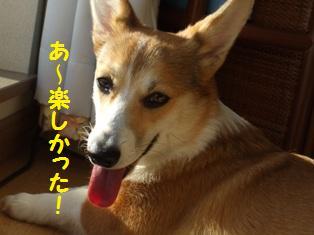 Rin080106-10.jpg