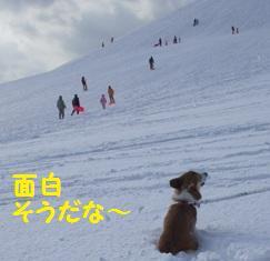 Rin080106-3.jpg