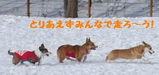Rin080112-822.jpg