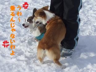 Rin080112-824.jpg
