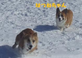 Rin080210-103.jpg