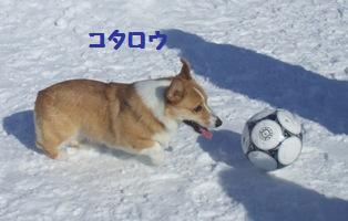 Rin080210-106.jpg