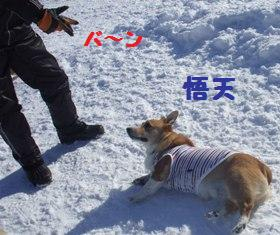 Rin080210-107.jpg