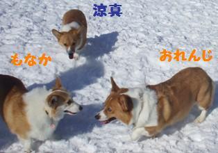 Rin080210-108.jpg