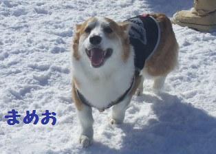 Rin080210-109.jpg