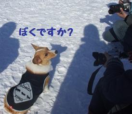 Rin080210-112.jpg