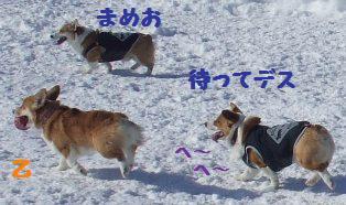 Rin080210-113.jpg