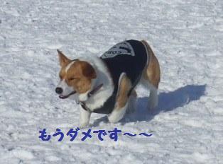 Rin080210-115.jpg