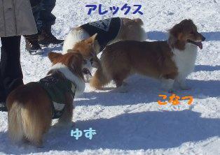 Rin080210-116.jpg