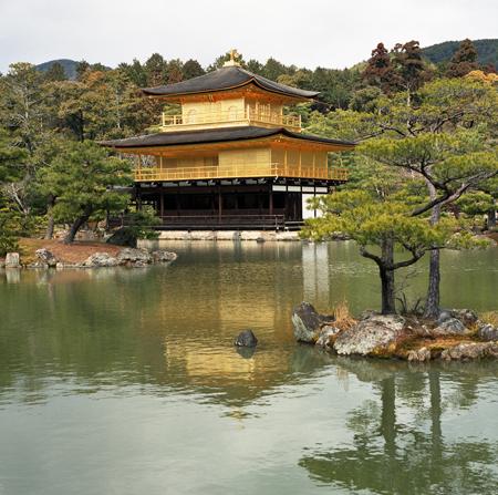 02・カラーの金閣寺