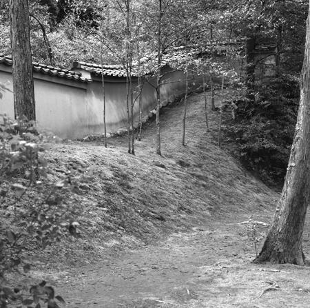 04・金閣寺の庭