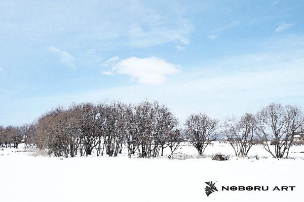 03・雑木林