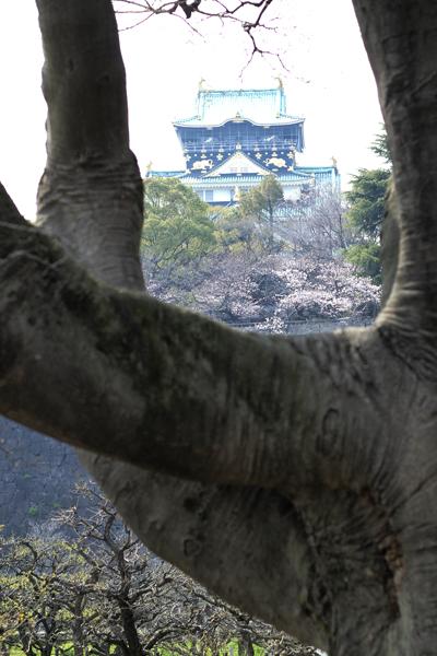 14・大阪城の春