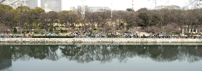 17・桜より見物客が多い