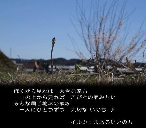 02・春告草