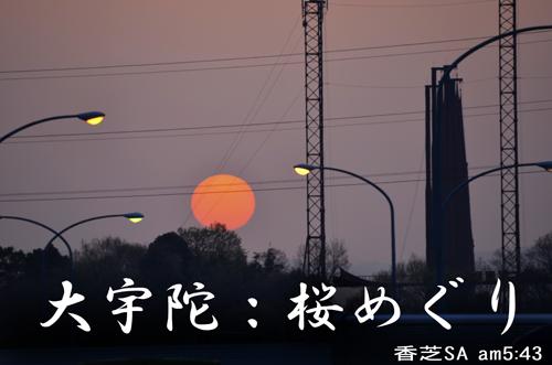 01・大宇陀桜めぐりタイトル