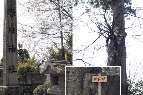 18・「春日神社」