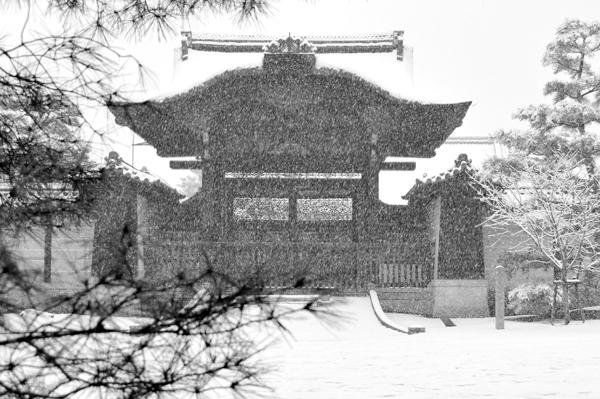 09・降雪の仁和寺