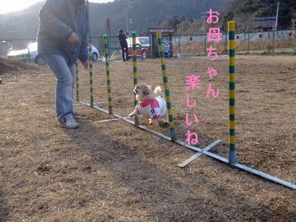 2008_02070036.jpg