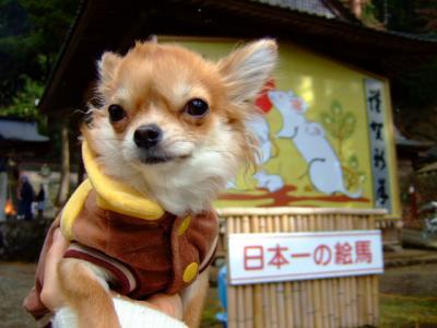 ホンマに日本一なのかなぁ。