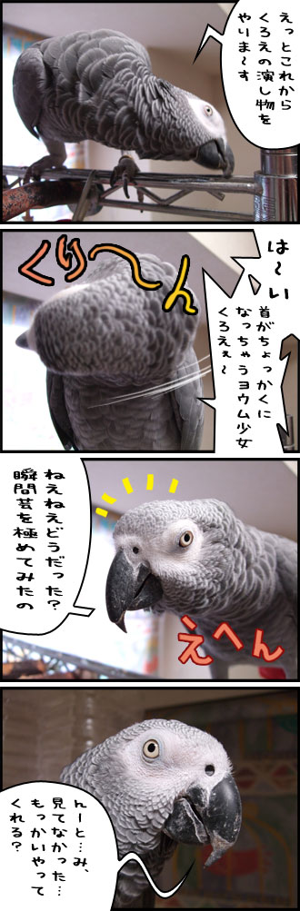 じゃんくろ劇場No.04