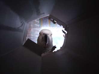 トンネルの向こうにジャンリュック