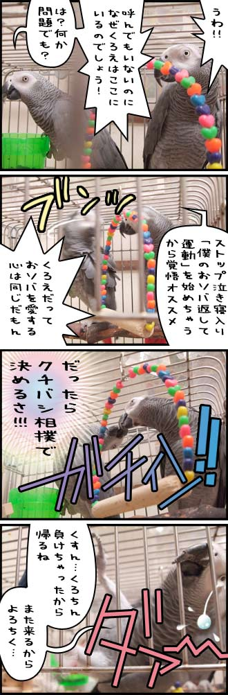 じゃんくろ劇場-No.09