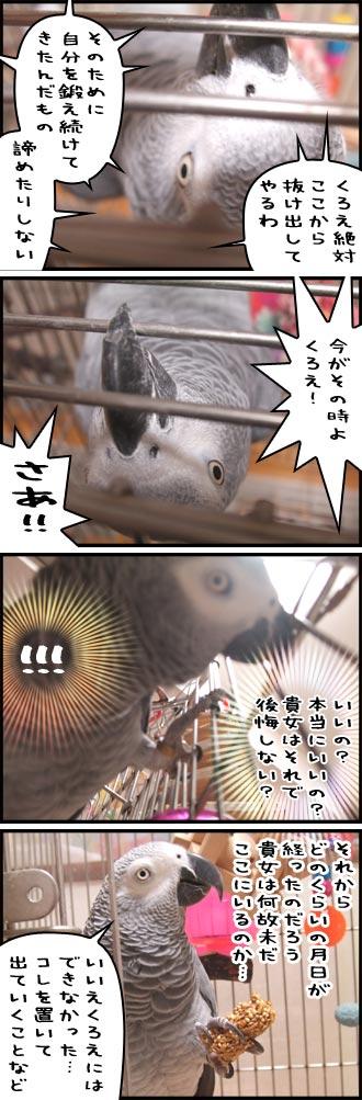 じゃんくろ劇場-No.10