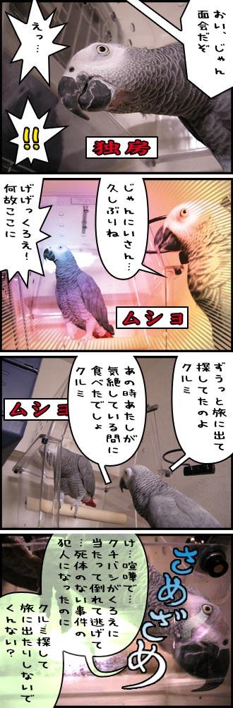 じゃんくろ劇場-No.14