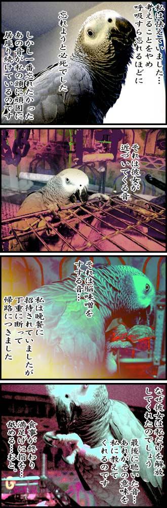 じゃんくろ劇場-No.23