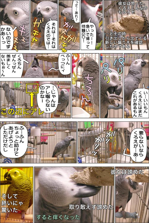ノンフィクション劇場-No.03