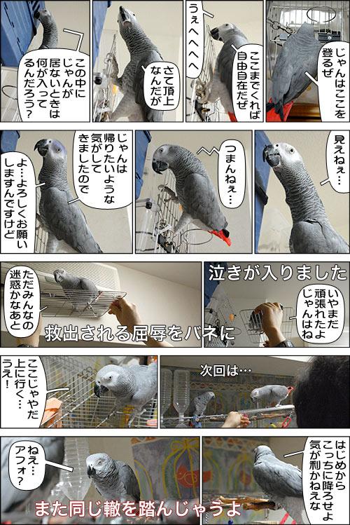 ノンフィクション劇場-No.04