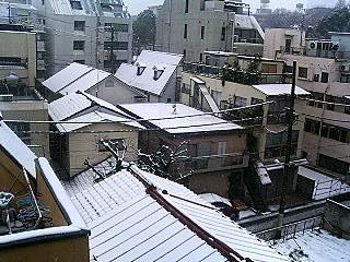 snow 20080203