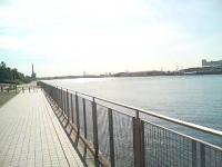 海の見える歩道。。