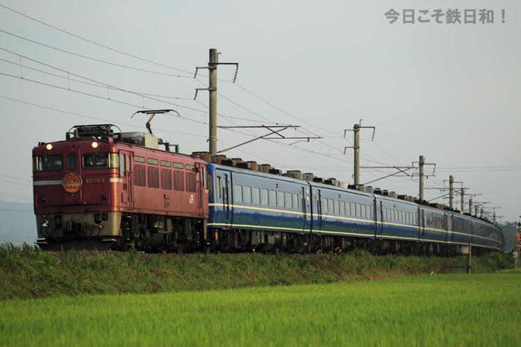 _MG_6631.jpg