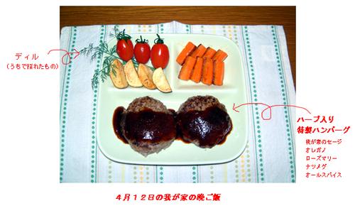 4.12ハーブ料理