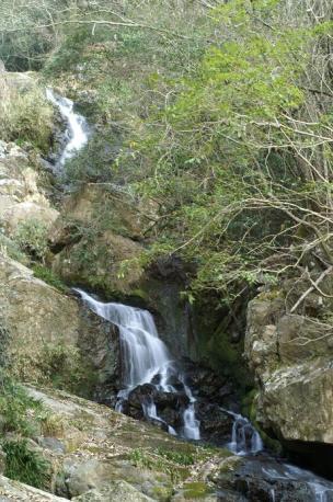 滝の上の方