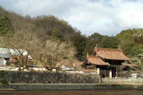 櫂の木と門